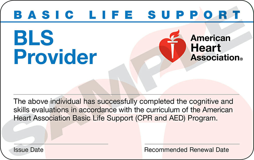 bls healthcare classes providers certification class aha training course